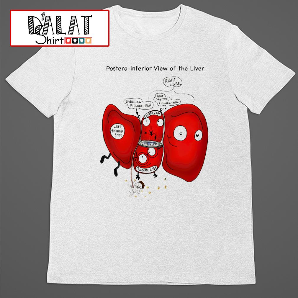 Posteroinferior view of the liver shirt